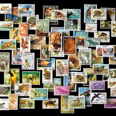 1000 FRANCOBOLLI - ANIMALI