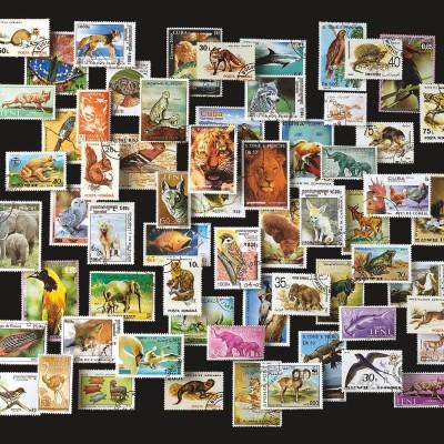 800 FRANCOBOLLI DEGLI ANIMALI